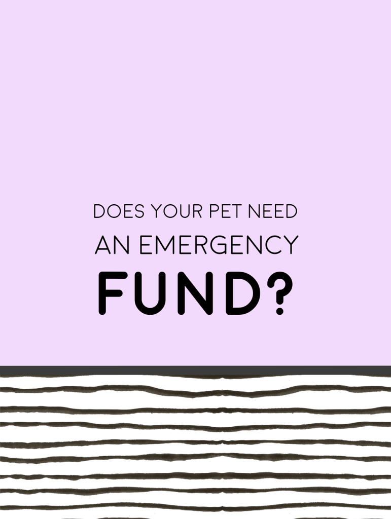 do-you-need-pet-emergency-fund